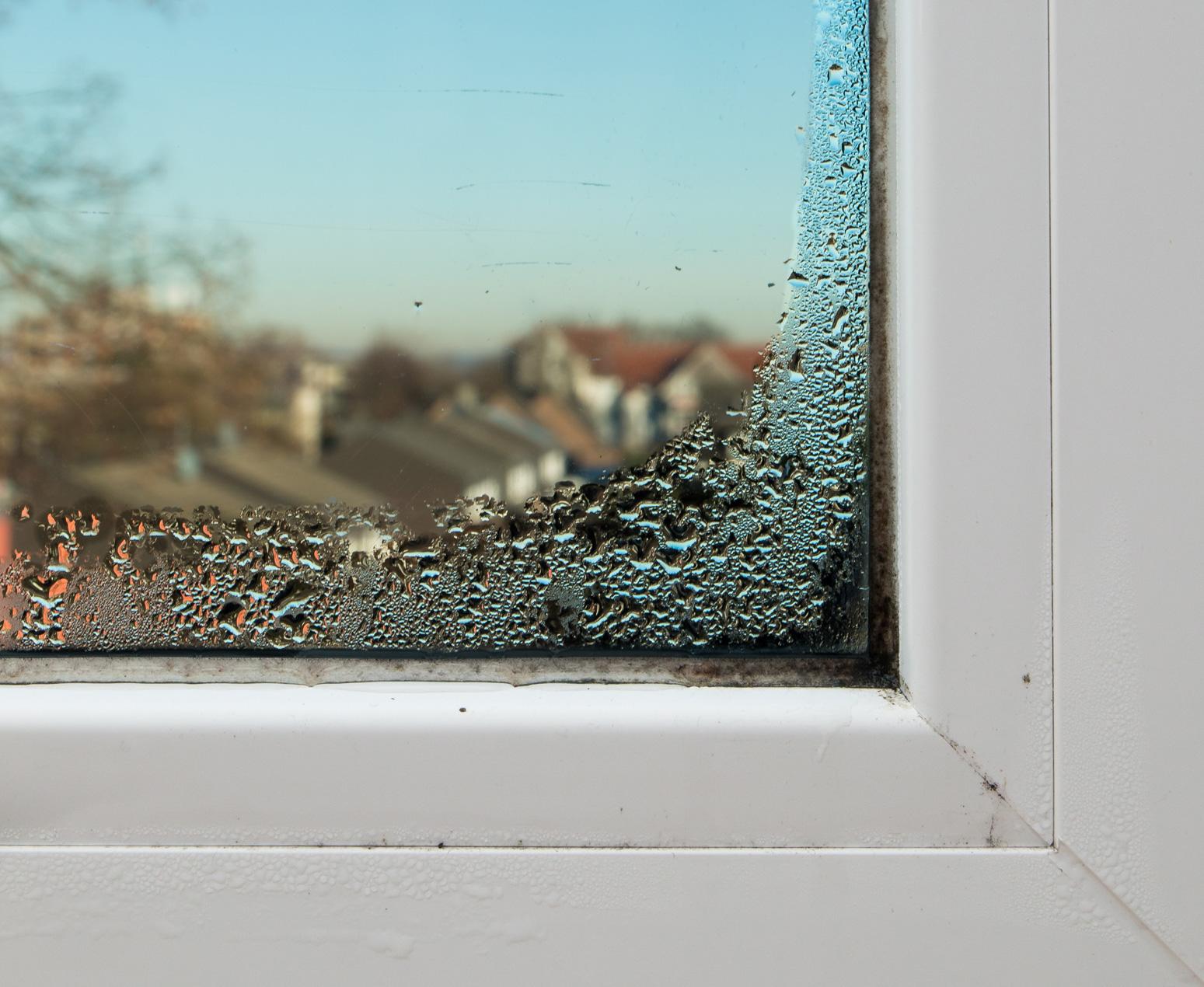 Fensterrahmen mit Kondensfeuchtigkeit